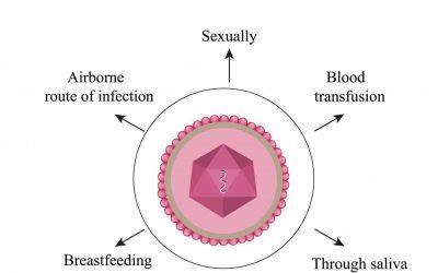 Co-infecties bij Lyme: Chronisch Vermoeidheidssyndroom